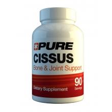Pure Labs Nutrition Cissus Quadrilangus 90 kapslí