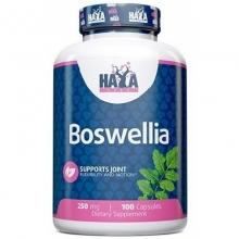 Haya Labs Boswellia Extract 100 kapslí