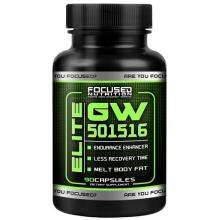 Focused Elite GW 501516 90kaps